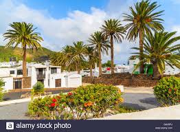 canary style houses in palm tree landscape of haria village stock