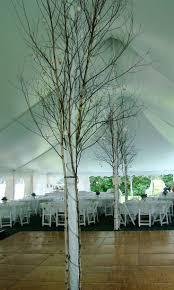 best 25 party tent decorations ideas on pinterest wedding