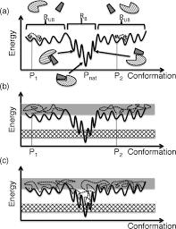 enhanced conformational sampling to visualize a free energy