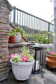 the 25 best plastic pots ideas on pinterest garden ideas pot