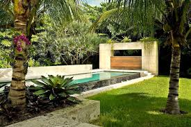 Tree Ideas For Backyard Modern Tropical Landscape Ideas With Beautiful Palm Trees And