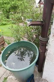 Eliminate Mosquitoes In Backyard by How To Prevent Mosquito Bites Best Ways To Get Rid Of Mosquitos