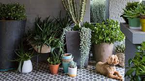 best urban garden designs