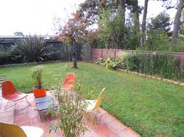 the landscape designer is in a modern garden for a midcentury