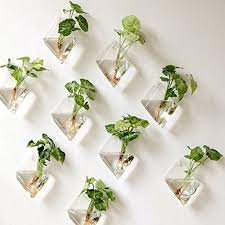 indoor wall mounted ls wall hanging glass planter plant flower terrarium indoor home decor
