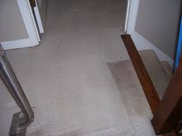 Laminate Floor Smells Musty Home Page