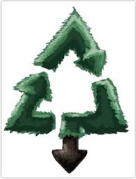 recycle your christmas tree there are drop off locations