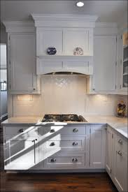 Led Under Cabinet Kitchen Lights 100 Under Kitchen Cabinet Light Waypoint Inset Light Rail