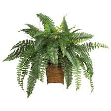silk plants boston fern w wood wicker basket silk plant walmart