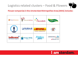 flower companies 9 logistics related clusters logistics related clusters strong
