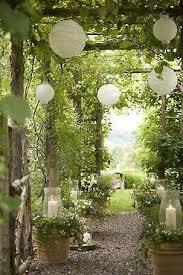 310 best flowers for garden images on pinterest