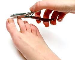 amazon com medical grade toenail clippers podiatrist u0027s nippers