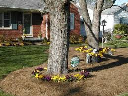 Landscaping Ideas Around Trees Garden Ideas Around Trees Perfect Home And Garden Design