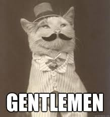 Gentleman Meme - gentlemen original business cat quickmeme