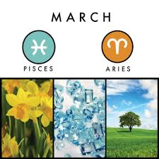 flower of the month birth signs and symbols what to expect