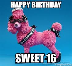 Sweet 16 Meme - happy birthday sweet 16 happy birthday marky poodle meme generator