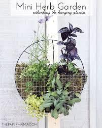 What Is An Indoor Garden Called - gardening