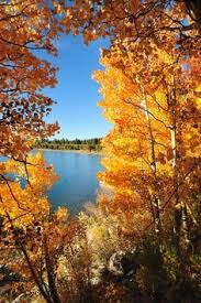 spectacular fall color california lakes mammoth