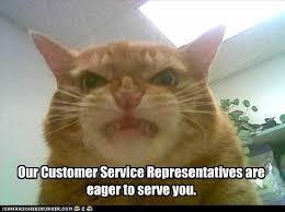 Customer Service Meme - meowy inspirational service customer service life