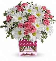 fort worth florist polka dot surprised delivery in fort worth tx fort worth florist