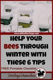 best 25 beekeeping ideas on pinterest bees bee keeping and