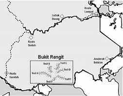 foraging niche segregation in malaysian babblers family timaliidae