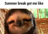 Asthma Sloth Meme - best sloth meme asthma sloth ifunny kayak wallpaper