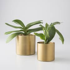 Small Decorative Vases Brass Planter Planters Plants And Schoolhouse Electric