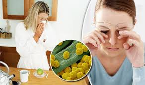 cuisine afro am icaine hay fever symptoms could be reduced by this food