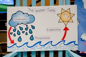 8 fast free water cycle resources and activities teach junkie