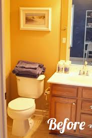 guest bathroom ideas pictures guest bathroom paint makeover
