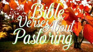 bible verses about pastoring and guidance what does the bible