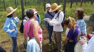 backyard naturalist program explores diversity of brunswick county