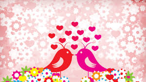 love birds wallpaper wallpapers for free download about 3 660