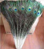 peacock wedding decorations peacock wedding decorations peacock feather wedding collection
