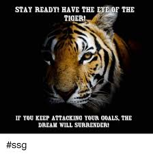 Eye Of The Tiger Meme - stay ready have the eye of the tiger if you keep attacking your