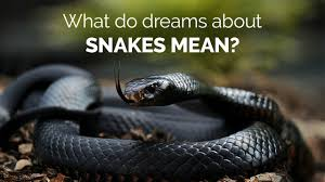 what a snake means and symbolizes in dreams guy counseling