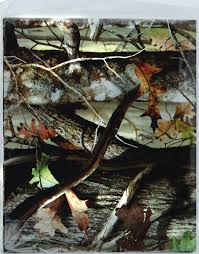 camo gift wrap haverc products cool licensed party products next camo
