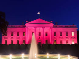 white house goes pink for breast cancer awareness month white