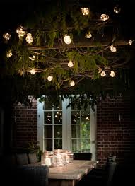 Outdoor Hanging Lights For Trees Outdoor Hanging Tree Lights Home Design