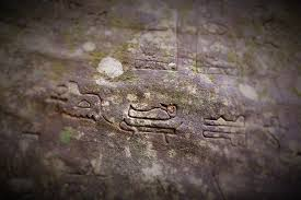 what are 5 000 year old egyptian hieroglyphs doing in australia