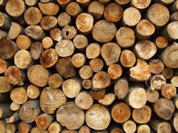 the meaning and symbolism of the word firewood
