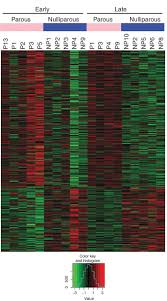 targeted dna methylation screen in the mouse mammary genome