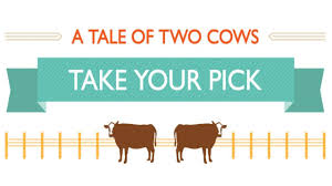 a tale of one house a tale of two cows take your pick youtube