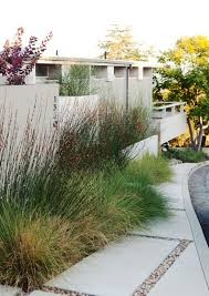 Modern Landscaping Ideas For Backyard Sted Concrete Floor For Modern Backyard With Ideal Drought