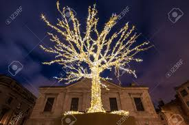 small tree surrounded by a decorative light for and