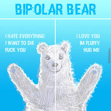 Bi Polar Meme - bipolar memes best collection of funny bipolar pictures