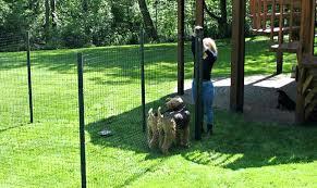 Garden Ideas For Dogs Temporary Fencing Ideas Diy Build Temporary Fencing For Dogs Fence