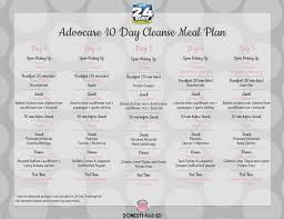 advocare 10 day cleanse meal plan a meal plan for the first 10