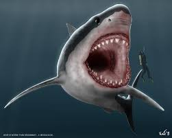 megalodon facts and pictures